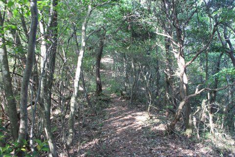 kokuzou140525-6
