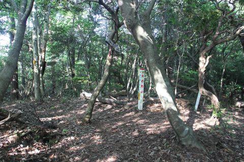 kokuzou140525-7