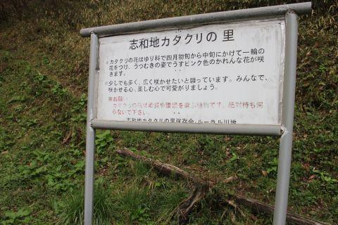 shiwachi150405-06