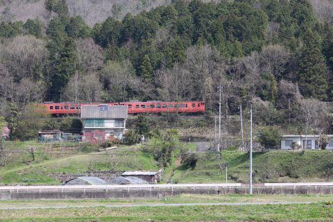 mukaihara-katakuri160409-10