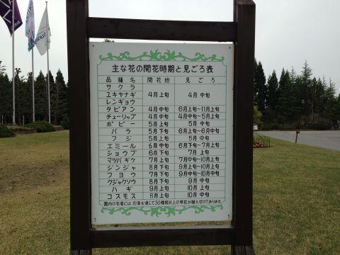 wakunaga-teien160410-03